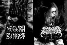 Pagan Storm News: 17/03 -23/03