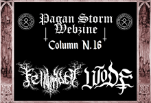 Column N.16 – Fellwarden & Wode (2017)